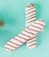 Merry & Bright Holiday Cookie Sticks Dog Treats - Apple Cinnamon, 2 Ct